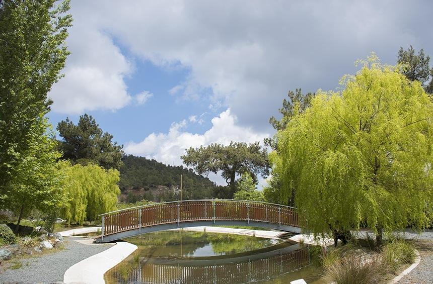 Ботанический сад Троодоса на высоте 1400 метров над уровнем моря! (Фото): фото 23
