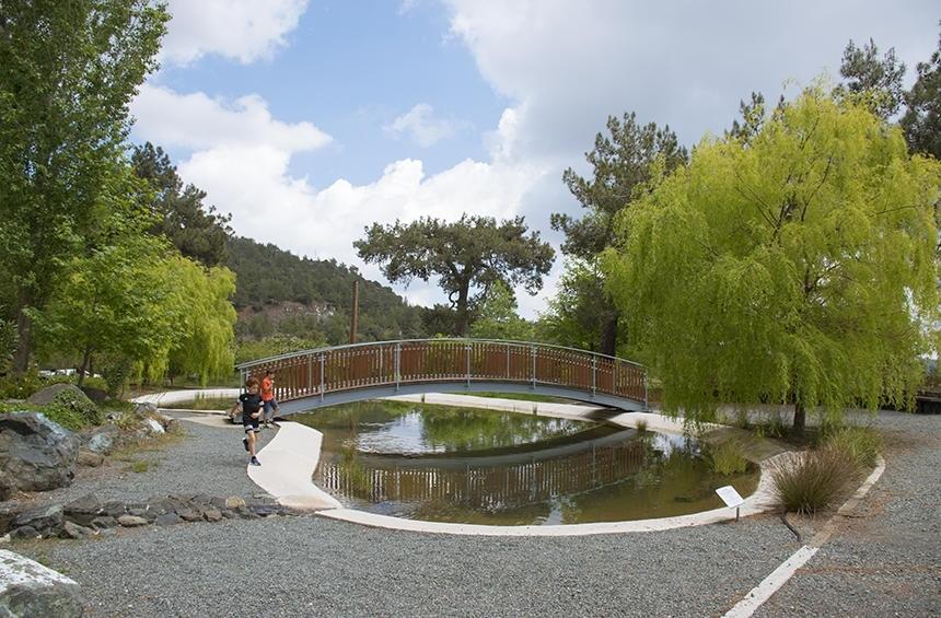 Ботанический сад Троодоса на высоте 1400 метров над уровнем моря! (Фото): фото 3