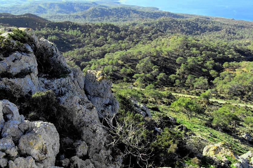 Pissuromutti Nature Trail, Cyprus.