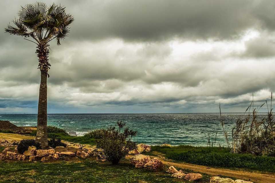 Зима на Кипре в январе